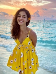 Ananya Panday Latest Insta Pictures 1